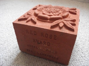 Red Rose Award