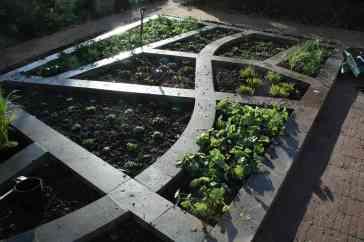 Colour Garden - during planting