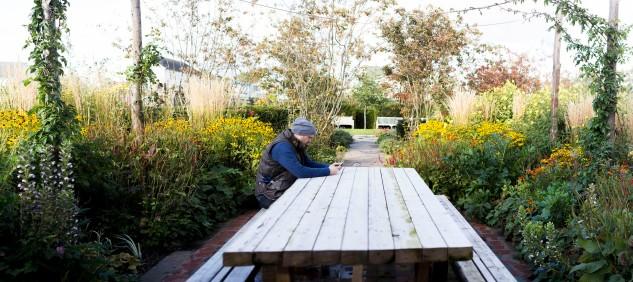 BCA Landscape Rotunda - Mid October 2015 (2)